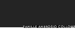 Domaine des OULLIERES